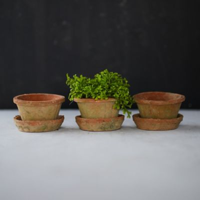 Earth Fired Clay Thin Rim Pot + Saucer, Set of 3