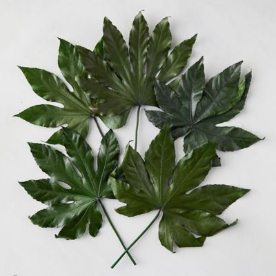 Preserved Sun Leaf Bunch