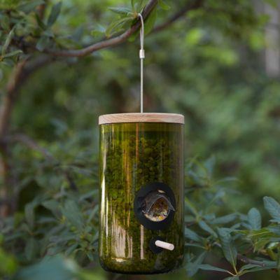 Bird Recycled Bottle Feeder