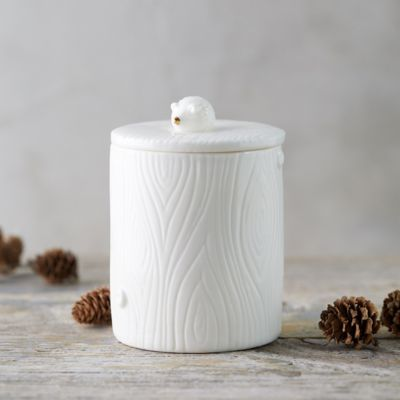 Woodland Candle, Mountain Forest