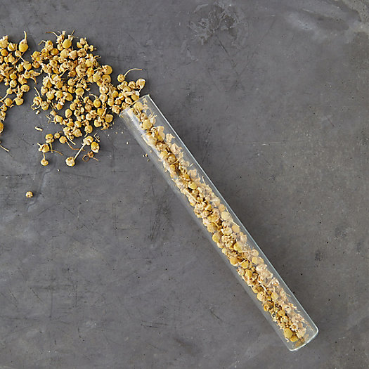 View larger image of Edible Organic Chamomile Buds