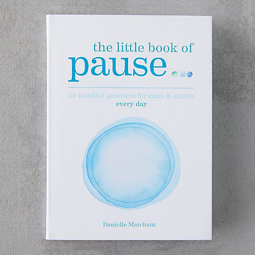 View larger image of The Little Book of Pause