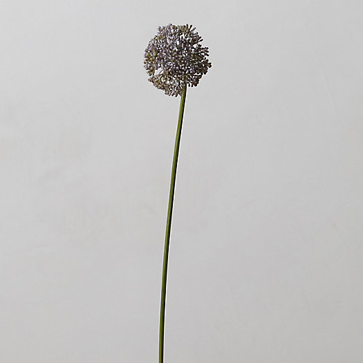 View larger image of Faux Allium Stem