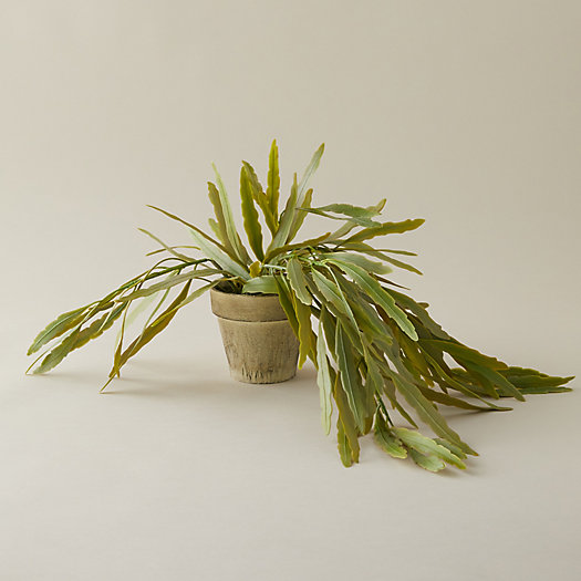 View larger image of Faux Potted Plant