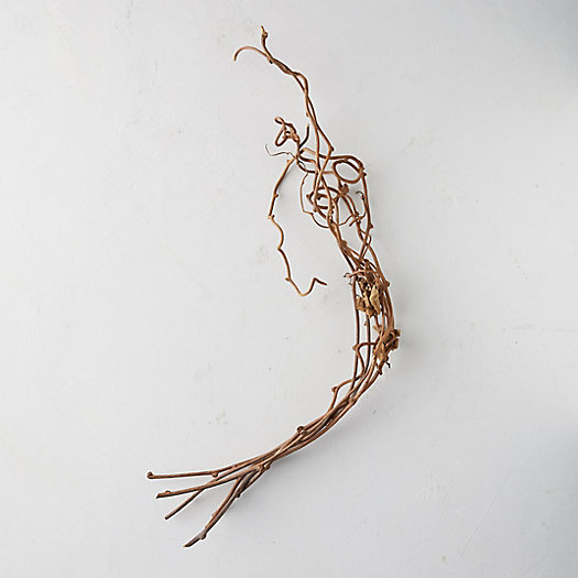 View larger image of Dried Kiwi Vine