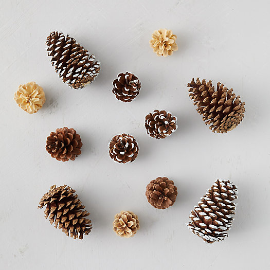 View larger image of Pinecone Mixed Bunch