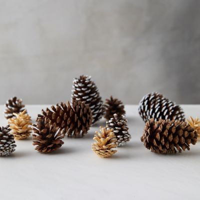 Pinecone Mixed Bunch