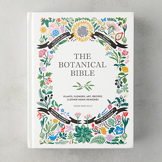 View larger image of The Botanical Bible