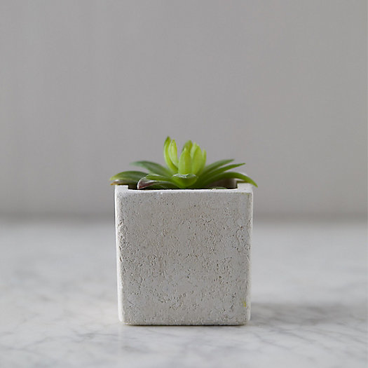 View larger image of Faux Succulent, Ceramic Pot