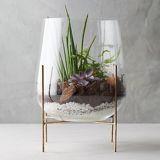 View larger image of Tall Terrarium, Brass Stand