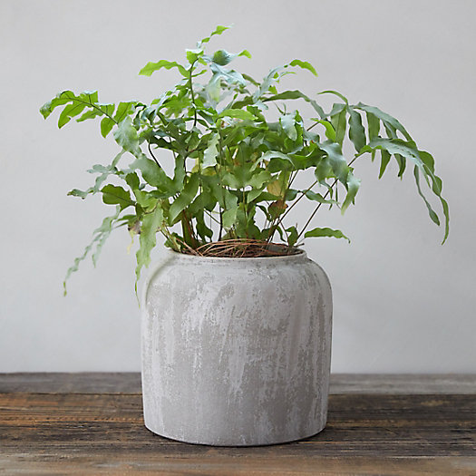 View larger image of Sanded Terracotta Jar