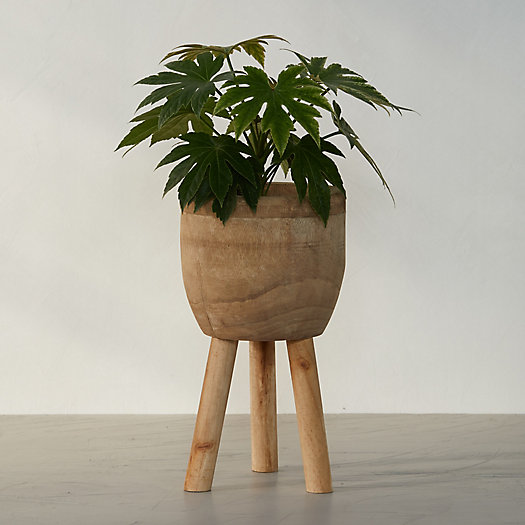 View larger image of Palm Wood Plant Stand