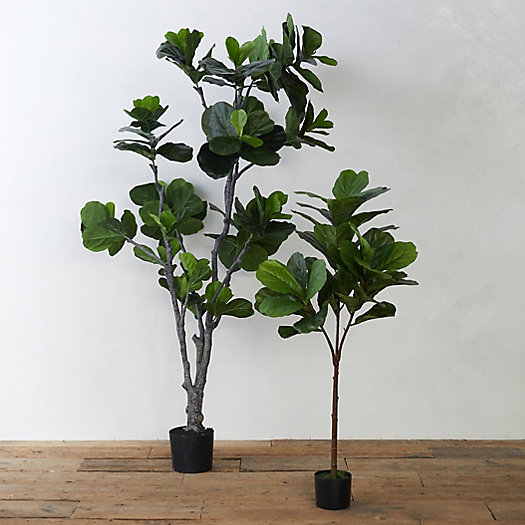 View larger image of Faux Fiddle Leaf Fig Tree