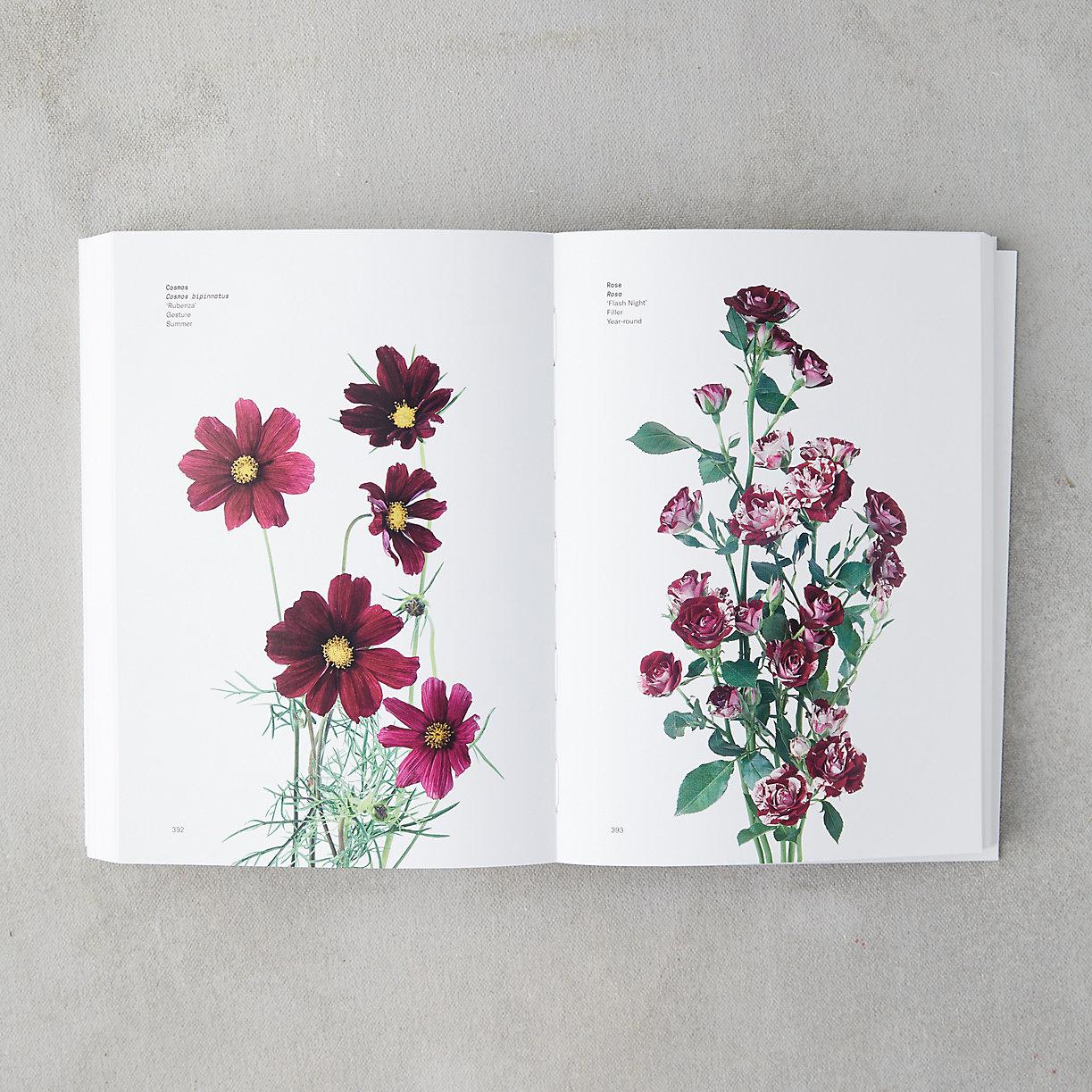 Flower Color Guide Terrain