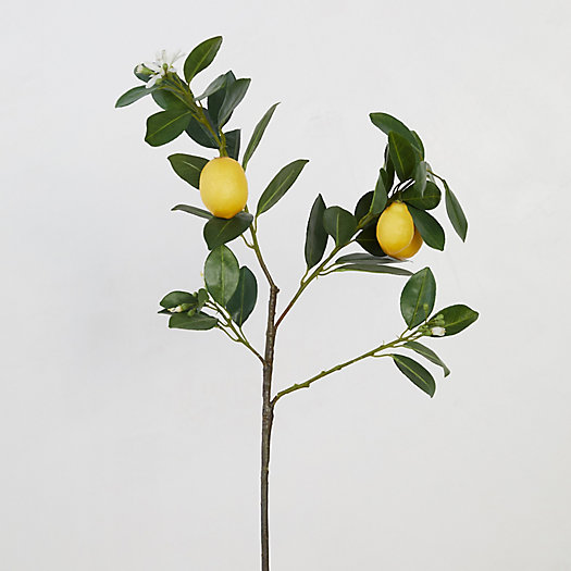 View larger image of Faux Lemon Tree Branch