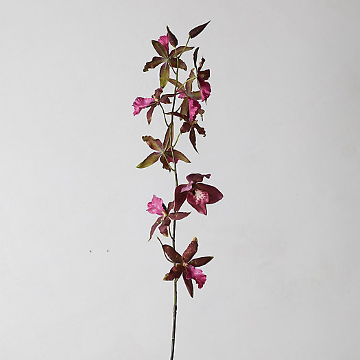View larger image of Faux Oncidium Orchid Bloom