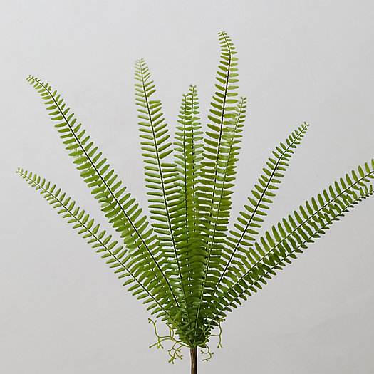 View larger image of Faux Fern Pick