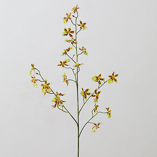 View larger image of Faux Yellow Orchid Spray