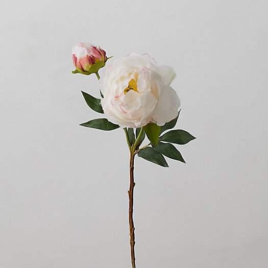 View larger image of Faux Peony Stem