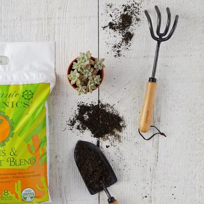 Soil, Amendments + Tools 101