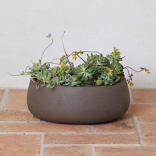 View larger image of Cement Bowl Planter