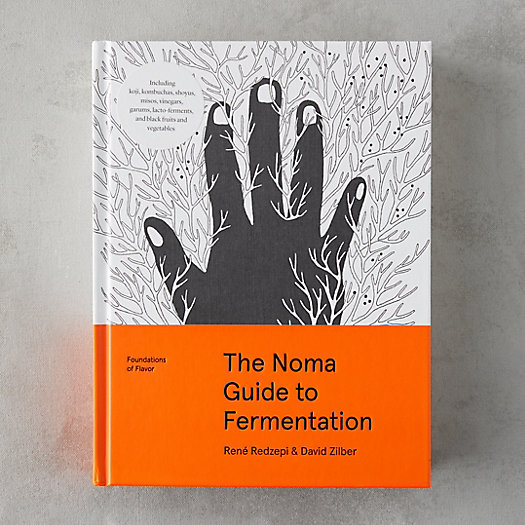 View larger image of Noma Guide to Fermentation