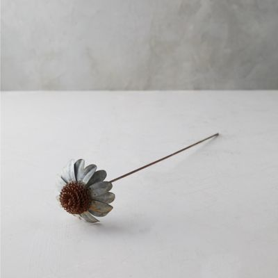 Iron Cone Flower Stem