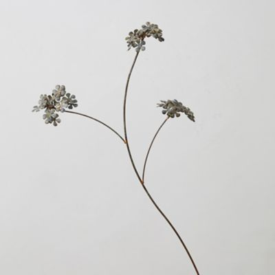 Flower Bunches Stem
