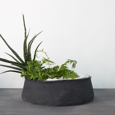 Freeform Concrete Bowl Planter