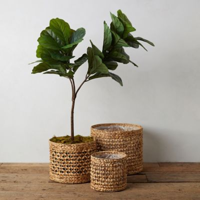 Reed Basket Planter