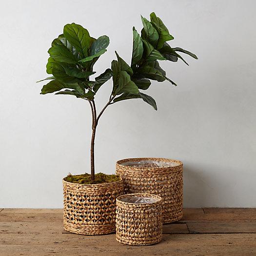 View larger image of Reed Basket Planter