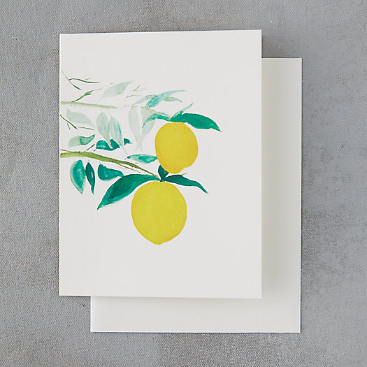 View larger image of Citrus Branch Card