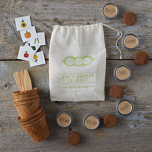 View larger image of Kids' Garden Seed Kit