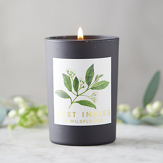 Hi Wildflower Candle, West Indies by Terrain