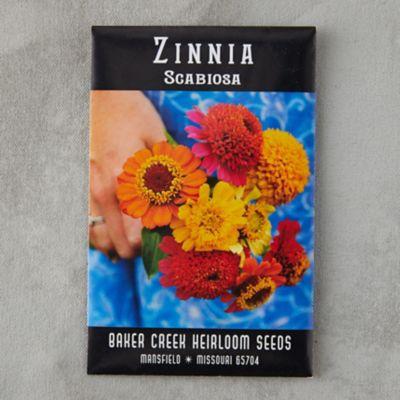 Scabiosa Zinnia Seeds