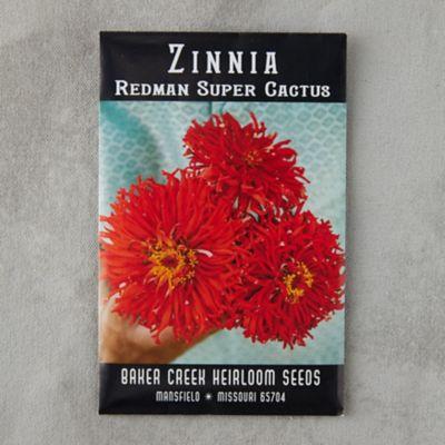Redman Super Cactus Zinnia Seeds
