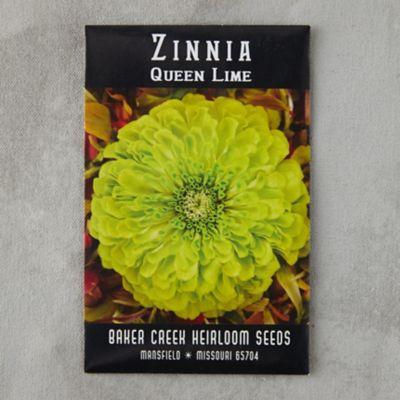 Queen Lime Zinnia Seeds