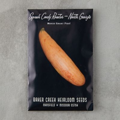 Candy Roaster Squash Seeds