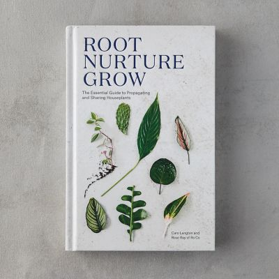 Root Nurture Grow