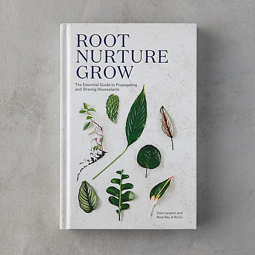 View larger image of Root Nurture Grow