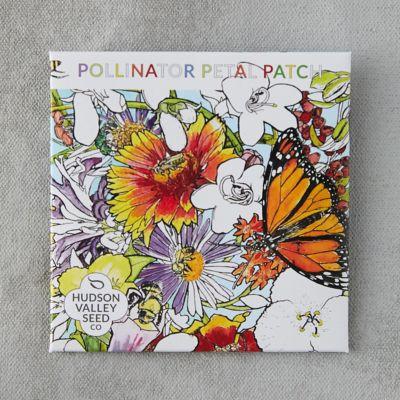 Pollinator Petal Patch Seeds