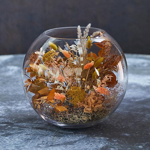 View larger image of Fishbowl Terrarium