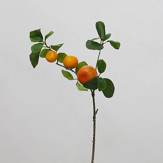View larger image of Faux Orange Branch