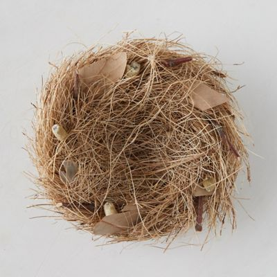 Prairie Bird Nest