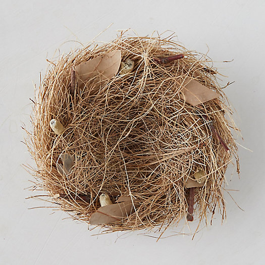 View larger image of Prairie Bird Nest