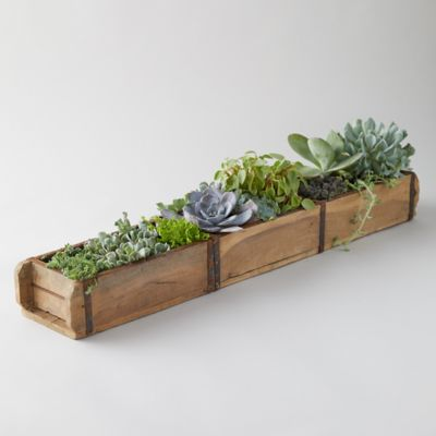 Brick Mold Planter