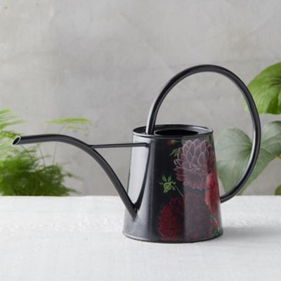 RHS Dahlia Watering Can