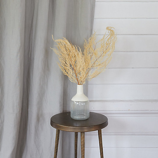 View larger image of Bleached Miniera Fern Bunch