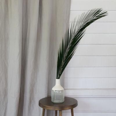 Pheonix Palm Frond