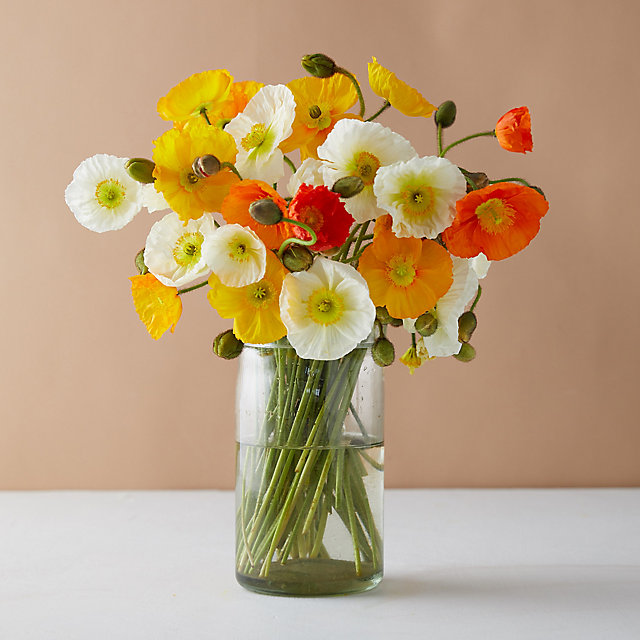 The Poppy Bunch | + More bouquets to brighten their day